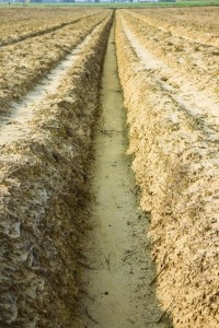 Ditch of rainwater collection in a plowed field