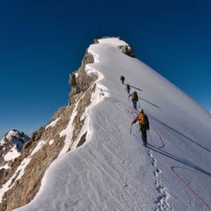 5 Basic Principles Entrepreneurs Should Follow to be a Sales Sherpa™